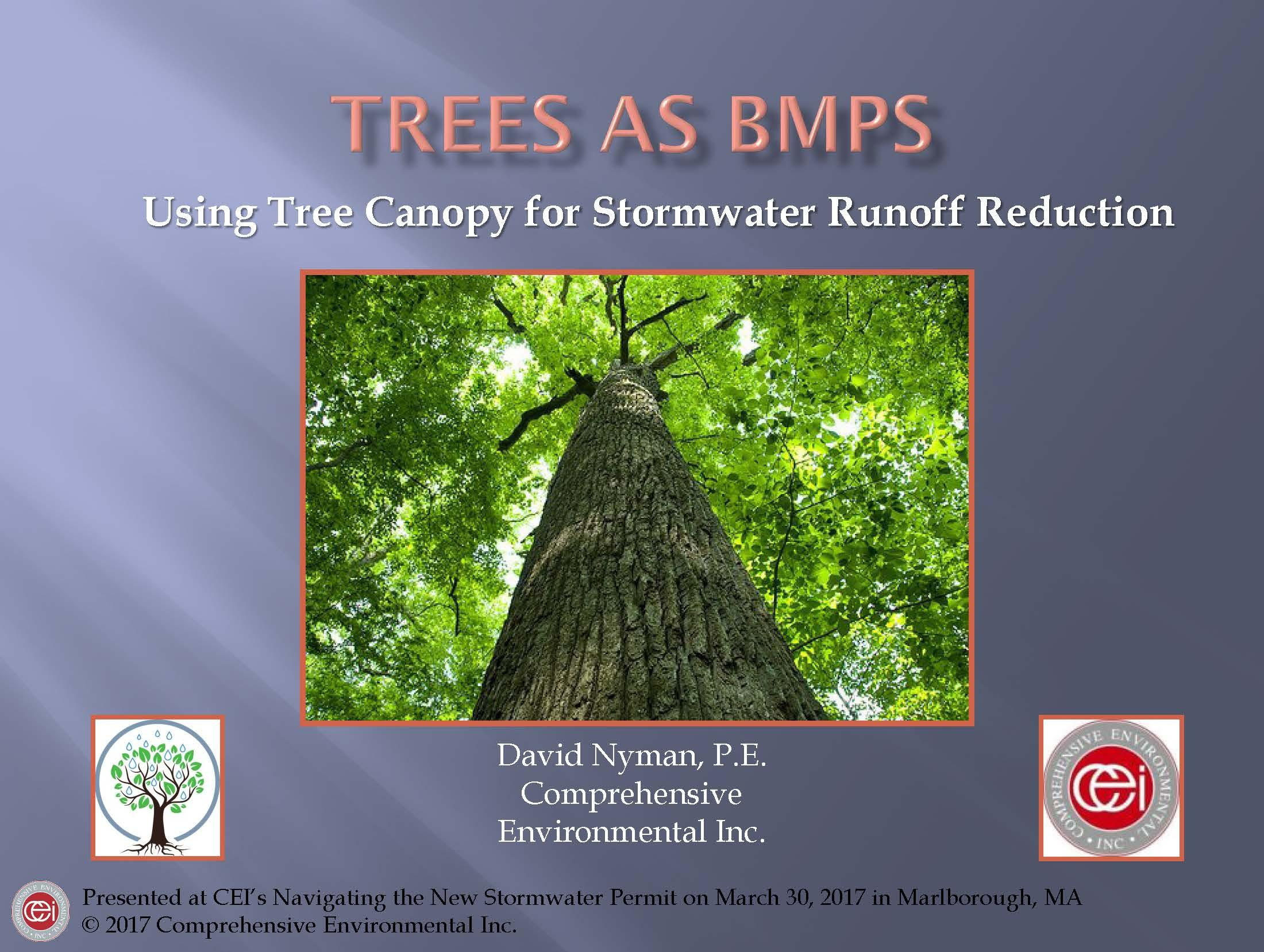 Tree Canopy Powerpoint Presentation