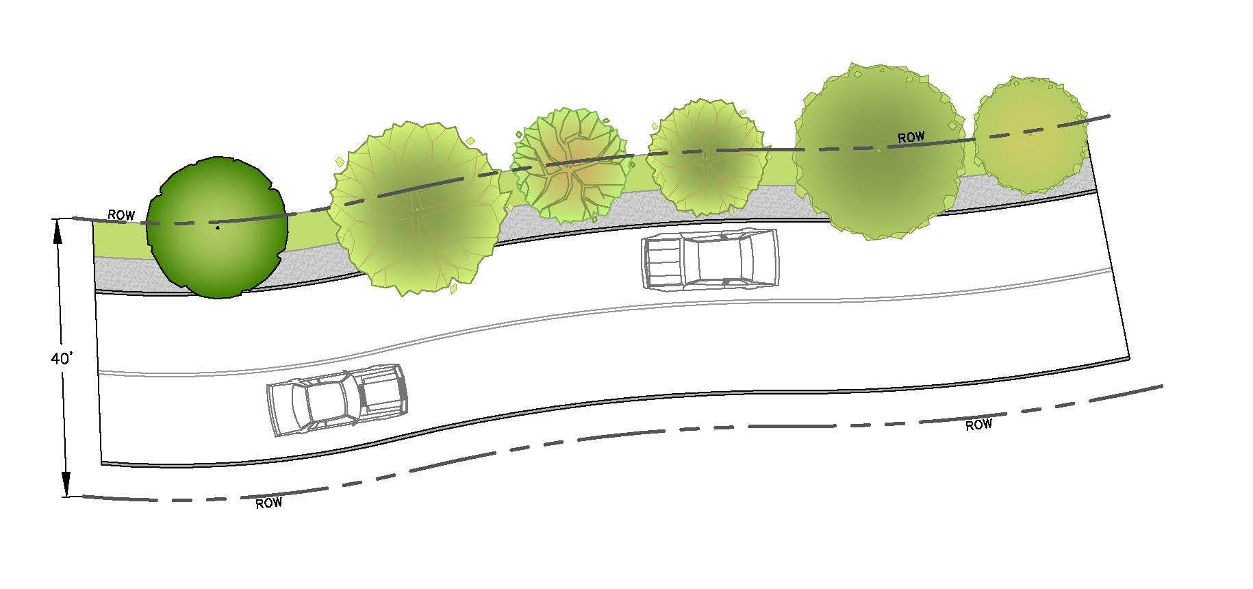 Large Trees on One Side of Road - Typical Plan