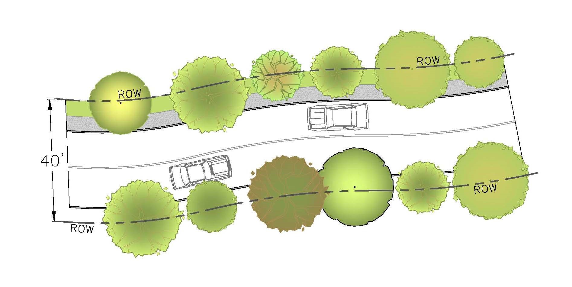 Large Trees on Both Sides of Road - Typical Plan